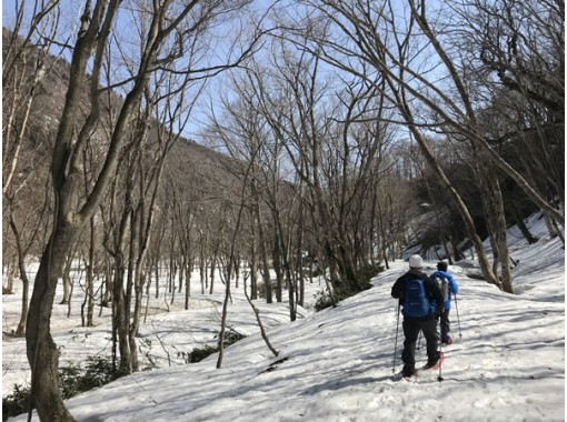 [5 minutes from IC] Full-day snow trekking tour in Gunma Minakami village forest * Lunch includedの紹介画像