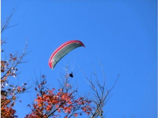 【京都・亀岡】パラグライダー体験「プチチャレンジ+470mタンデムコース)」無料送迎あり!15才~