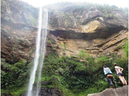 【沖繩/西表島】可以放心玩!感染擴大預防對策店。受歡迎的 No.1 Pinaisara Falls 半日 AM Waterfall 獨木舟和徒步旅行の紹介画像