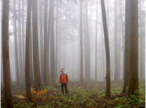 【東京・青梅】山林アドベンチャー!山しごと1日体験ツアー(地元食材BBQ付き)
