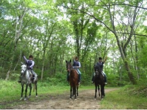 MIKIホーストレック(Miki Horse Trek)の画像