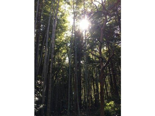 【鳥取・湯梨浜町】お子さま・女性に人気!竹灯籠をビー玉・ビーズなどでデコレーションの紹介画像