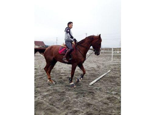 【岡山・加賀郡】経験者限定!乗馬体験(一般ビジターコース)