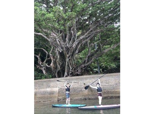 奄美人気マリンアクティビティ❗️SUP体験とボードシュノーケルが一度に楽しめる贅沢なツアー