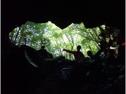 【洞窟探検ツアー】神秘の森と氷の洞窟の紹介画像
