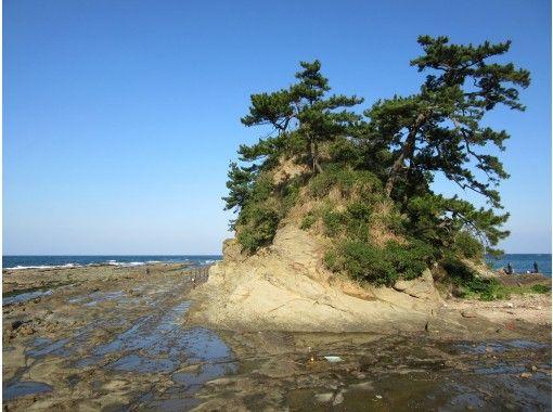 潮風ショートブレイク ~芦屋千軒の営みと響灘の自然~の紹介画像