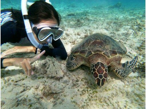 海ガメと一緒に家族で泳ごう‼️【ジュニアコース】海ガメ探索ュノーケル ※5歳からご参加頂けますお子様大歓迎❗️の紹介画像