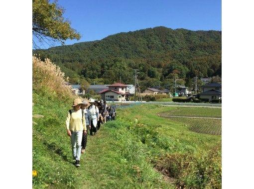 [Nagano / Kiso Kaida Kogen] Walking anytimeの紹介画像