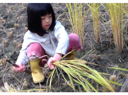 【長野・大町市 農家体験】首都直下地震・東南海地震に備え自給自足を考えている方なら是非!