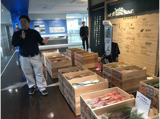 【Miyagi・Shiogama】Tuna Auction & Seafood Breakfast at  Fish Marketの紹介画像