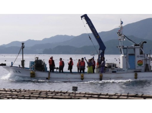 【Iwate】Pair oysters with sake matured under the sea! の紹介画像