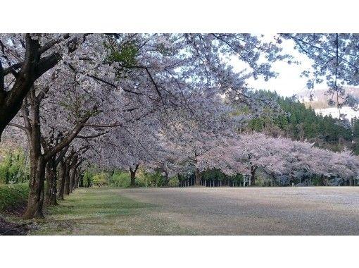 【新潟・越後湯沢】旅チャリで巡る湯沢春周遊コース(ガイドなし)