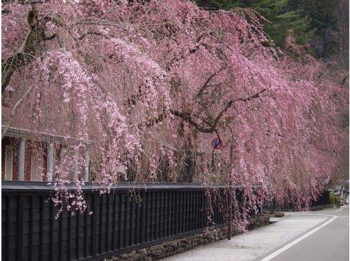 【Miyagi】Attracxi: Spring in Tohoku (April 22 – 25, 2019)の紹介画像