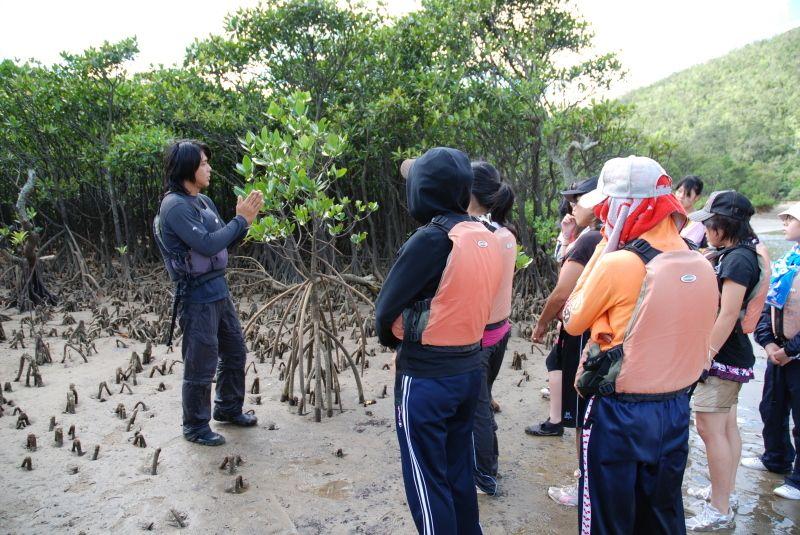 Iriomote Island leisure recommendation