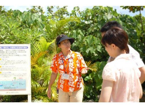 【宮古島】2020年6月~2020年10月 宮古5島と3大大橋を巡る絶景1日バスツアー