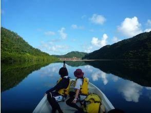 西表島 浦内川観光(Iriomote Island Urauchigawa kankou)の画像