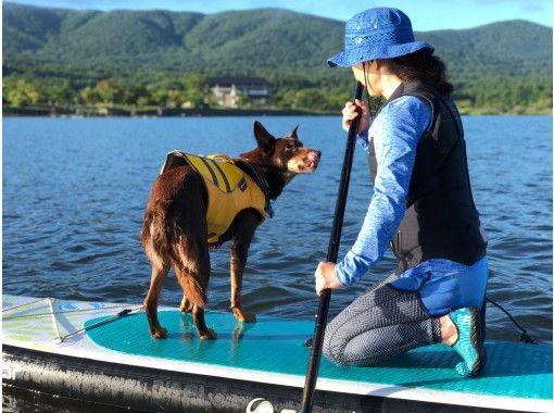 【富士山・山中湖】初心者歓迎! 山中湖でのSUP体験  お子様もご一緒に!10才から参加OK! 愛犬も一緒に体験OK!