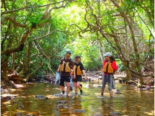 【沖縄・西表島】コロナ感染防止対策済、応援プライス!4.カヌー体験クーラの滝つぼ&沢歩き半日(午後)、写真データ付き