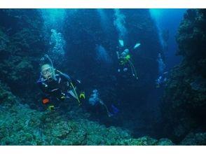 Ocean Blue(オーシャンブルー)の画像