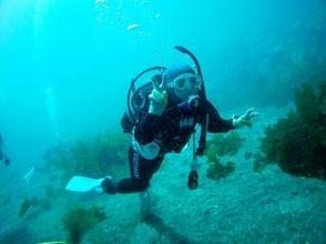 ダイビングショップ MIUの画像