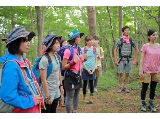 [Fukushima /Tara Adachi] Amatara no Mori Nature Trail Walkの紹介画像