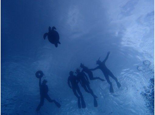 【沖縄・石垣島】お魚やサンゴに囲まれながらスキンダイビングを楽しもう!半日(AM・PM)ボートでポイントまで☆ガイドと一緒に海へ♪器材込み☆