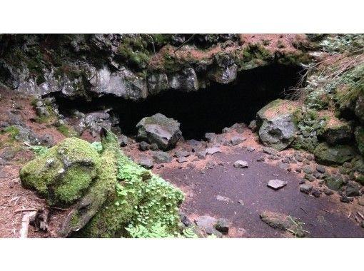 【富士山・樹海】富士の樹海をサイクリング&トレッキングツアー!溶岩洞窟探検も!MTBサイクリング→トレッキング→ケイビングの紹介画像
