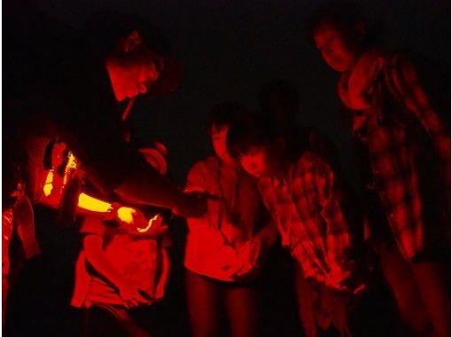 【栃木県・奥日光】野生動物と星空の世界へご招待!戦場ヶ原ナイトハイキングの紹介画像