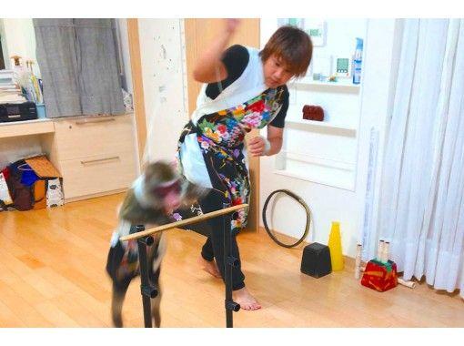 【オンライン体験】世界初ライブ配信!日本伝統芸能「猿回し」の紹介画像
