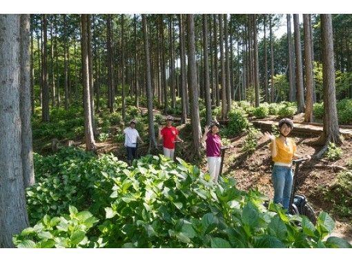 【三島スカイウォーク・箱根・伊豆】セグウェイ初級コース!森の中を爽快に巡る!自然に癒され、絶景も楽しめるガイドツアー