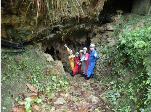 【沖縄・宜野座】やんばる自然洞窟、鍾乳洞をちょっとだけ体験したい方に!5才から参加OK!の紹介画像