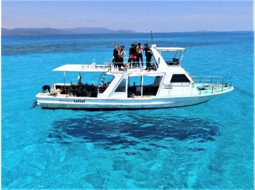 【沖縄・石垣島】大人気!1日スノーケル!マンタ・ウミガメ・ニモに会いに行こう器材無料(7時間)釣りやSUPも無料で可・コロナ感染対策実施の紹介画像