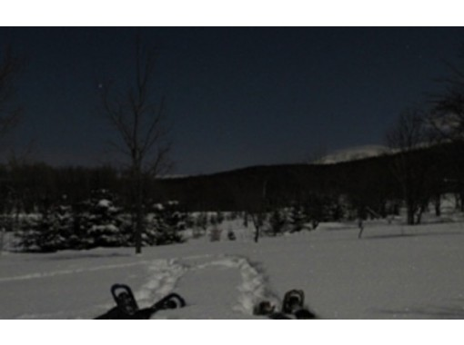 【北海道・知床】幻想的な雪あかりでスノーシューハイキング~夜の森の雰囲気を味わってみませんか?