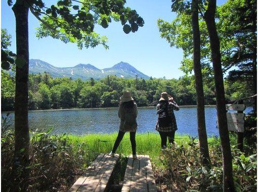 [Hokkaido / Shiretoko] Start at 14:00 ・ Popular No. 1: Shiretoko Goko Guided Tour ・ Certified guides will guide you through all of the five lakes !!の紹介画像