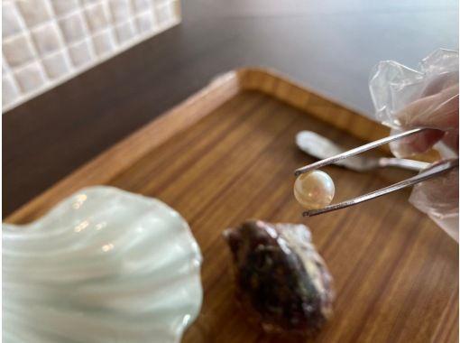 [在线珍珠体验! ] [运费和消费税科米x 2显然3500日元! ]压倒性的体验,可以从贝类中取出真正的珍珠♪作为礼物◎の紹介画像