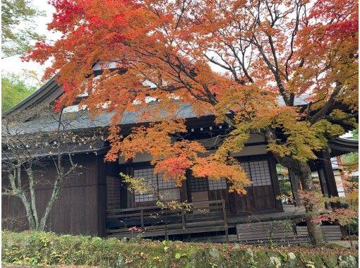 【岐阜・飛騨高山】座禅と東山寺町ツアー!の紹介画像