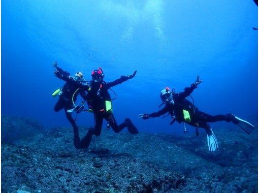 【周参見・黒潮の海】体験ダイビング(半日コース)