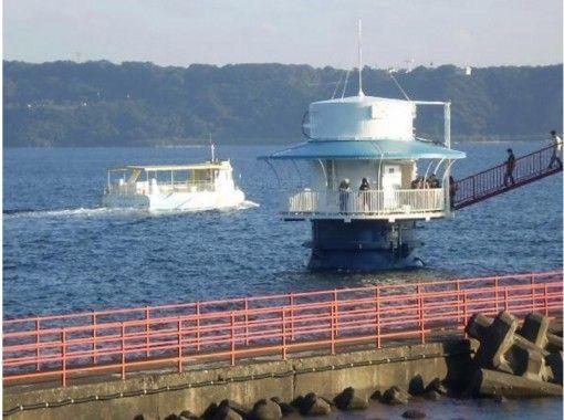 【和歌山・本州最南端】ボートダイビング(2ボート・ガイドあり)※要Cカードライセンスの紹介画像