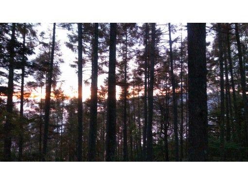 [Yamanashi / Minami-Alps] Departure on 11/19 (Thursday), 12/4 (Friday), 12/18 (Friday)! Early morning Yashajintoge 1 night 2 days trekking tourの紹介画像