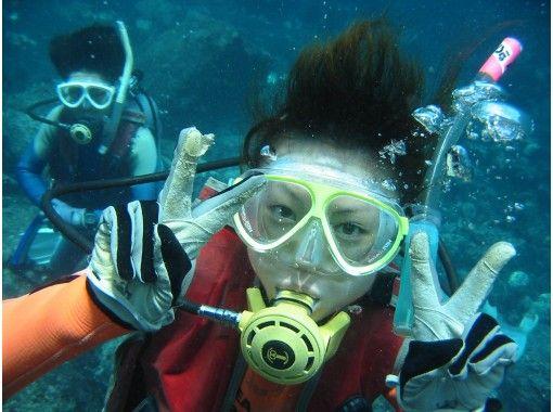 【東京・伊豆大島】マンツーマンで海中満喫!初めてでも安心して楽しめる体験ダイビング!10歳からOK!
