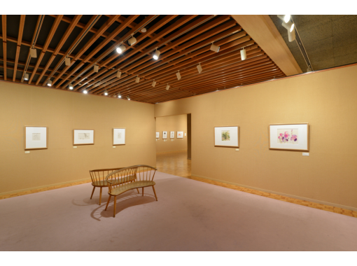 """2/13 (Sat) Nagano Tokyo-Limited Number of participants tour by a curator of the flower and children painter """"Chihiro Iwasaki"""" ONLINE Tour]の紹介画像"""