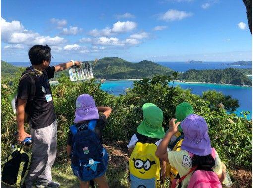 【慶良間・座間味島】オンライン自然観察ツアー。珍しい南の島の生物たち!高月山展望台に登ってみよう~!カラフルウェーブ  スライド形式ですの紹介画像