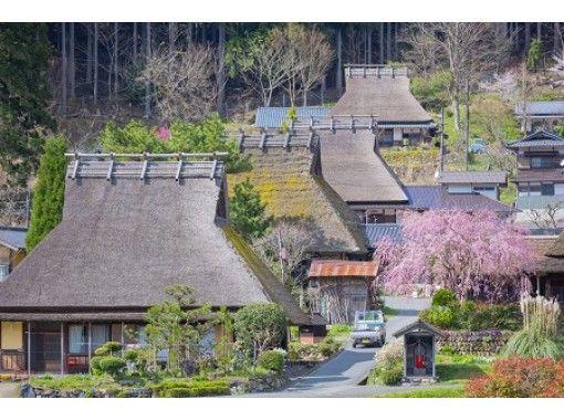 【京都・美山】日本の原風景「かやぶきの里」を地元ガイドと歩く!美山語り部ウォーク