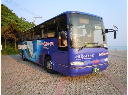 【冲绳/那霸出发】美丽海水族馆和大量冲绳观光巴士の紹介画像