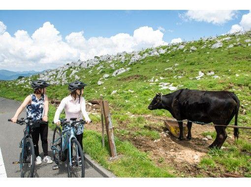 【愛媛・四国カルスト】四国カルストの高原で、爽やかな風を感じながらサイクリング「ちょい乗りプラン」の紹介画像