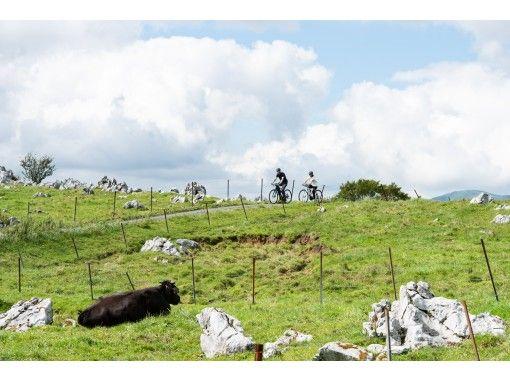 【愛媛・四国カルスト】四国カルストの高原で、爽やかな風を感じられる「半日サイクリングプラン」の紹介画像