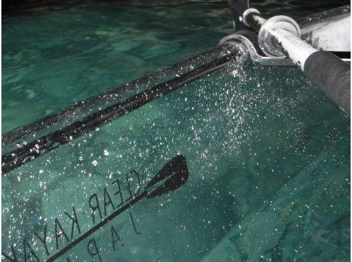 【クリアカヤック】透きとおる海の中をのぞこう!若狭湾コース [3時間]