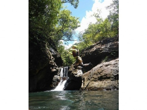 【沖縄・西表島】夏はこれで間違いなし!ピナイサーラ滝壺&キャニオニング清流遊びの紹介画像