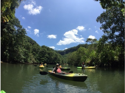 【沖縄・西表島】これぞ西表島の絶景を求めて!ピナイサーラ1日・滝上&滝壺の紹介画像