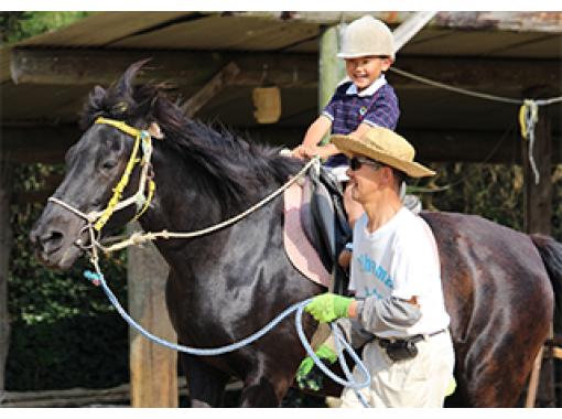 【広島・世羅町】牧場の人気者!ふれあい乗馬(引き馬)体験